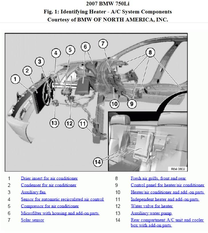 AUC location diagram